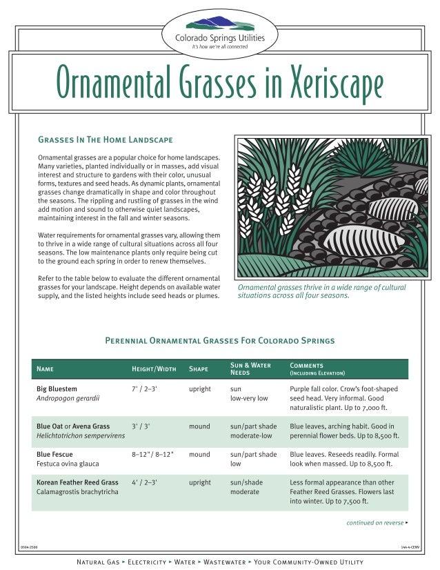 Ornamental Grasses in Xeriscape - Colorado Springs