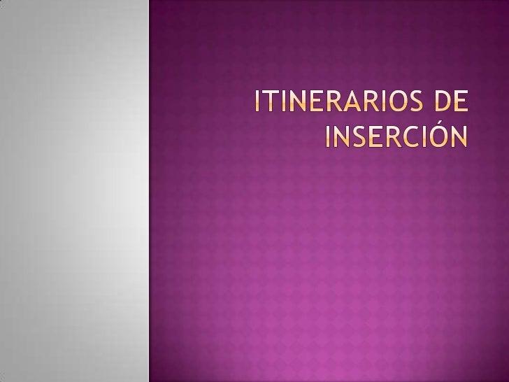 Itinerarios de inserción<br />