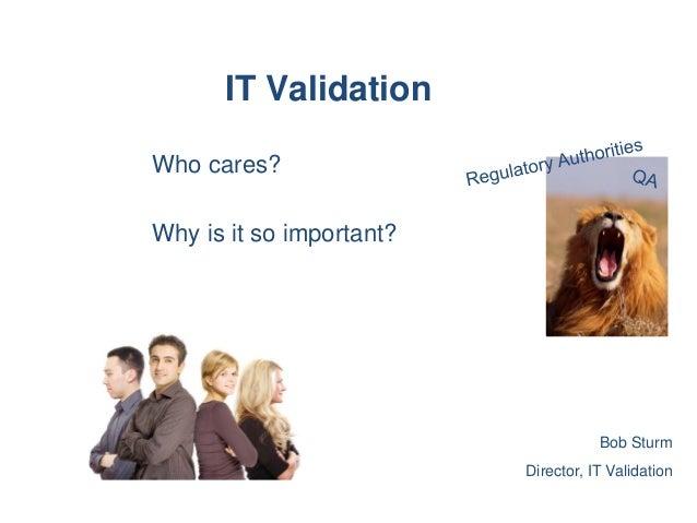 IT Validation Training