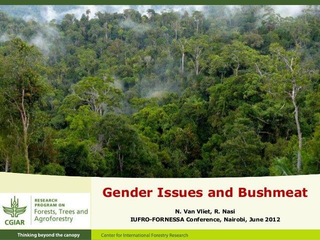 Gender Issues and Bushmeat N. Van Vliet, R. Nasi IUFRO-FORNESSA Conference, Nairobi, June 2012