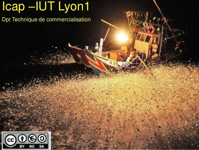 Icap –IUT Lyon1Dpt Technique de commercialisation