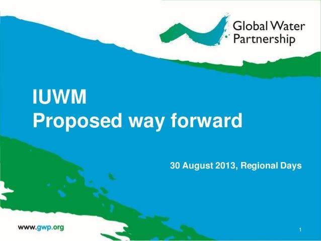 IUWM Proposed way forward 30 August 2013, Regional Days 1