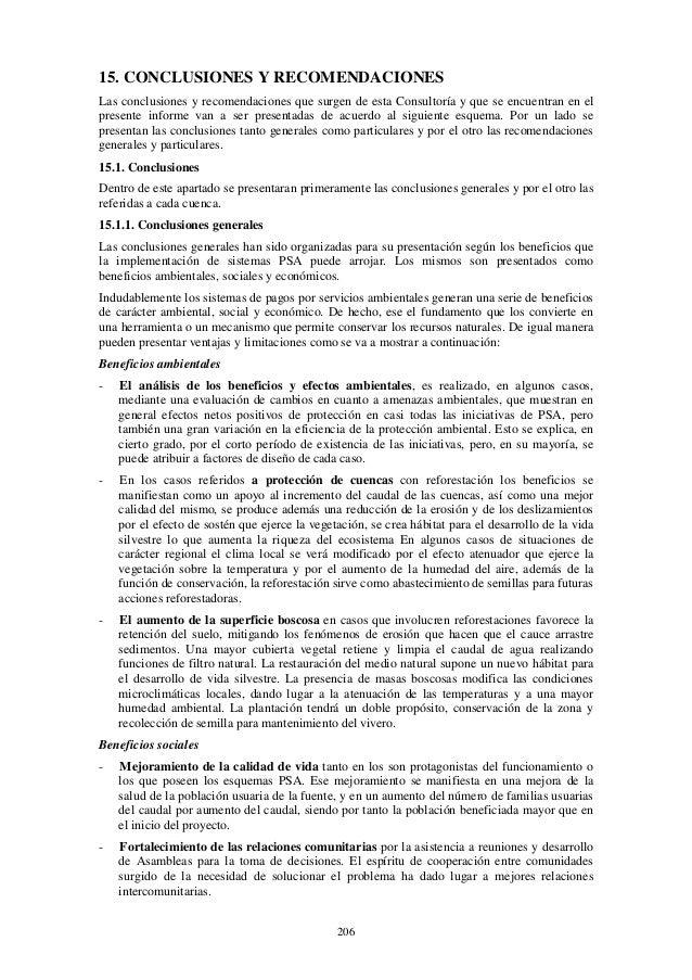 206 15. CONCLUSIONES Y RECOMENDACIONES Las conclusiones y recomendaciones que surgen de esta Consultoría y que se encuentr...