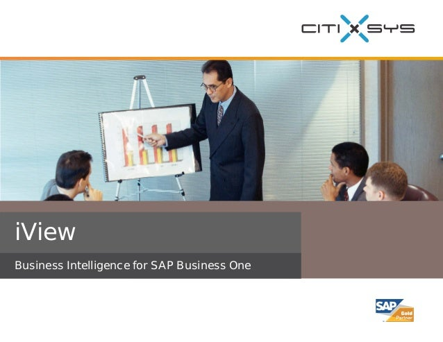 iView Business Intelligence for SAP Business One