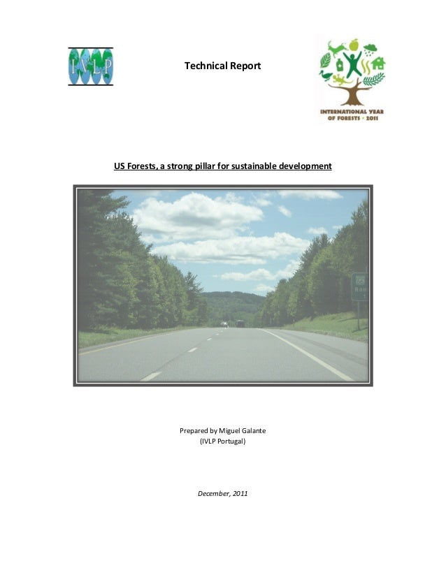 Technical Report  US Forests, a strong pillar for sustainable development  Prepared by Miguel Galante (IVLP Portugal)  Dec...