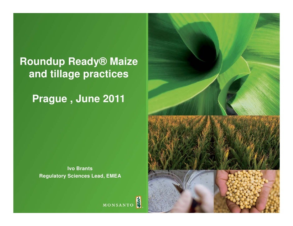 Roundup Ready® Maize and till   d tillage practices                 ti  Prague , June 2011              Ivo Brants   Regul...