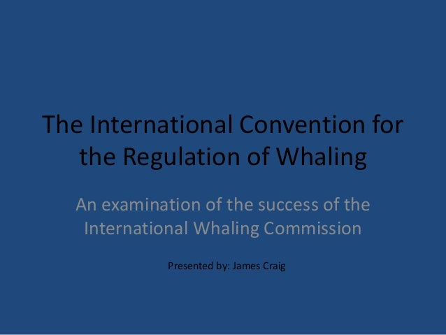 The International Convention for the Regulation of Whaling An examination of the success of the International Whaling Comm...