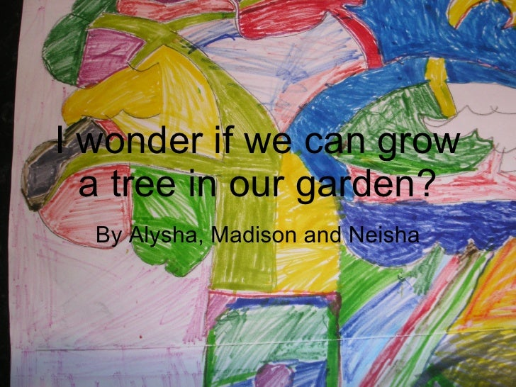 I wonder if we can grow a tree in our garden? By Alysha, Madison and Neisha