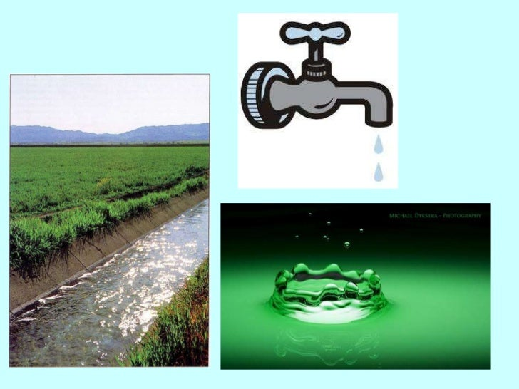 Water Related Institutional Bodies in Sri Lanka