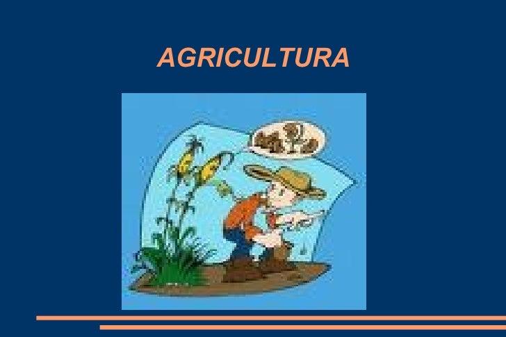 J Antonio Agricultura