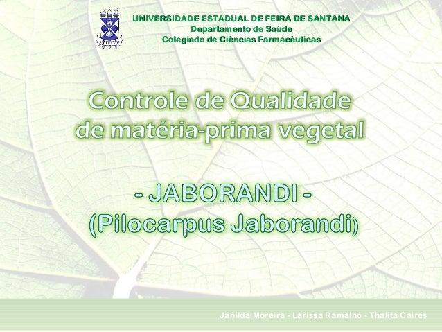 UNIVERSIDADE ESTADUAL DE FEIRA DE SANTANAUNIVERSIDADE ESTADUAL DE FEIRA DE SANTANA Departamento de SaúdeDepartamento de Sa...