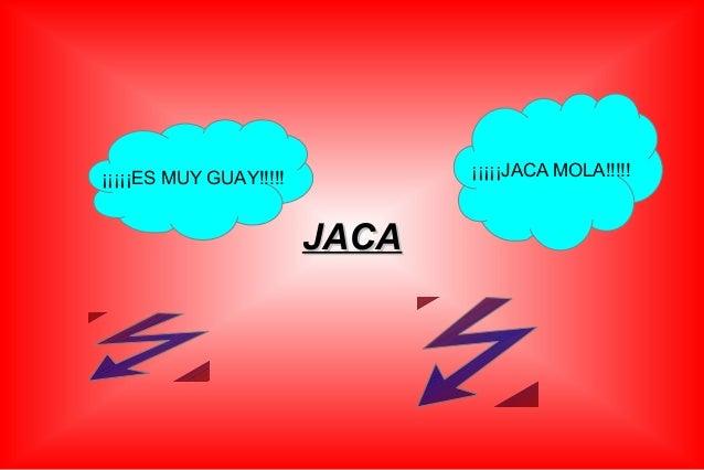 ¡¡¡¡¡JACA MOLA!!!!!  ¡¡¡¡¡ES MUY GUAY!!!!!  JACA