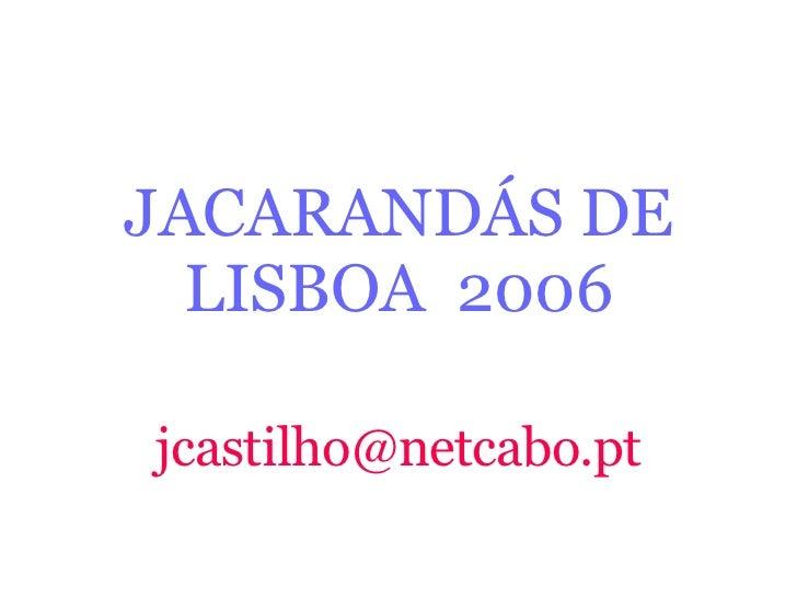 JacarandáSde Lisboa2006