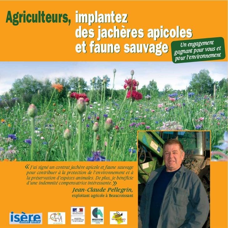 Agriculteurs, implantez              des jachères apicoles                                                                ...