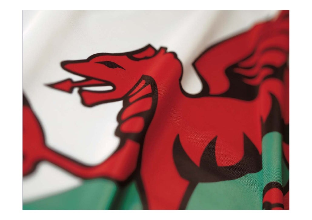 Jackson & Head - Welsh Information Literacy Project: our first steps to an information literate nation