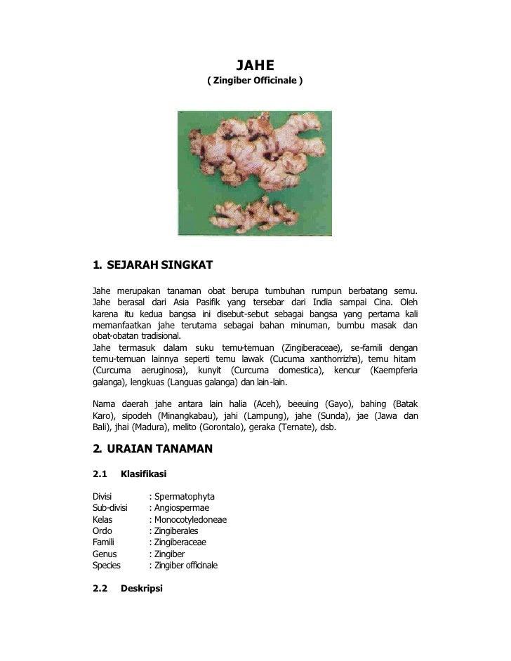 JAHE                              ( Zingiber Officinale )     1. SEJARAH SINGKAT  Jahe merupakan tanaman obat berupa tumbu...