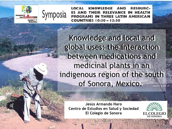 Knowledge and local and global uses: the interaction between medications and medicinal plants in an indigenous region of t...