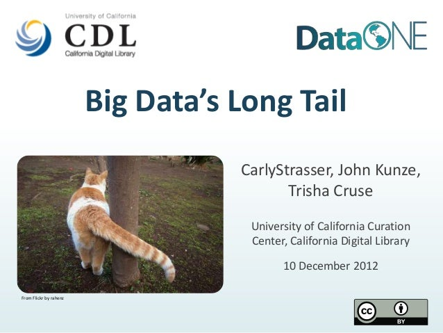 Big Data's Long Tail