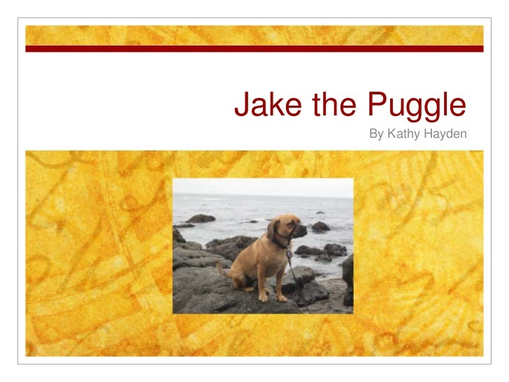 Jake the Puggle<br />By Kathy Hayden<br />