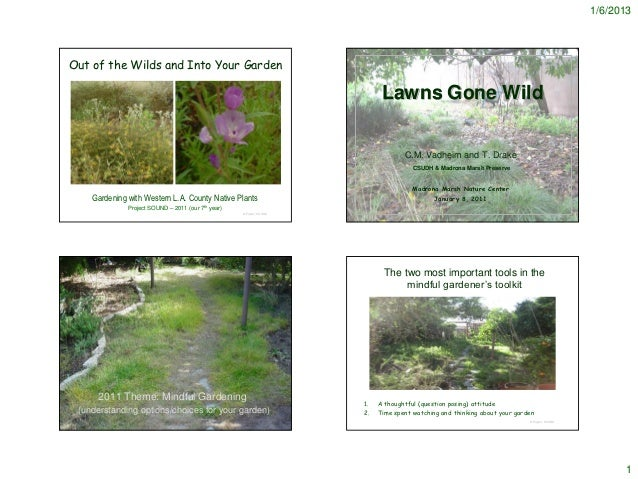 1/6/2013Out of the Wilds and Into Your Garden                                                                            L...