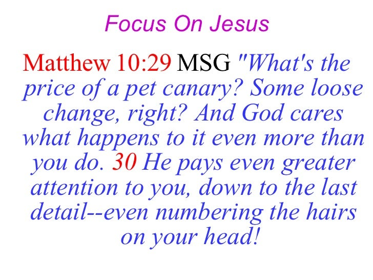 """Focus On Jesus <ul><li>Matthew 10:29  MSG   """"What's the price of a pet canary? Some loose change, right? And God care..."""