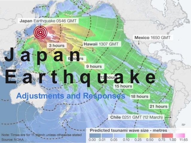 Adjustments and Responses to Japan Earthquake