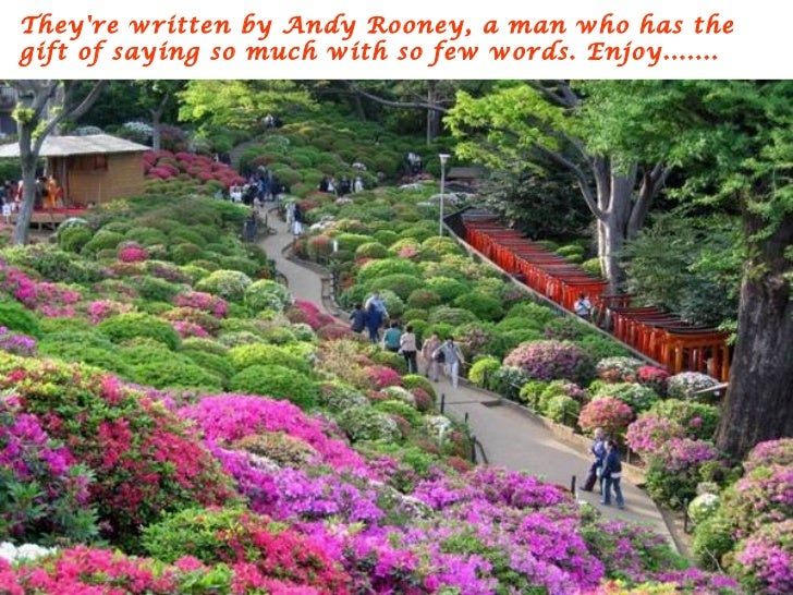 Theyre written by Andy Rooney, a man who has thegift of saying so much with so few words. Enjoy.......