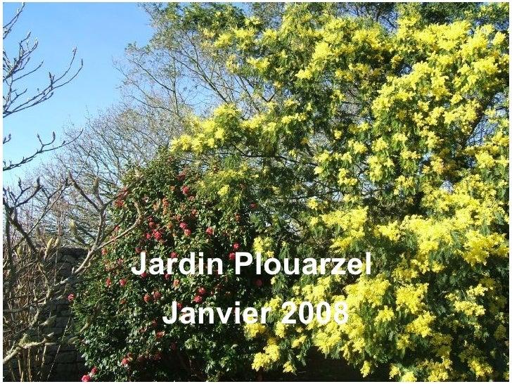 jardin janvier 08