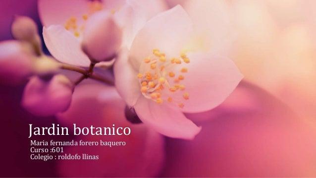 Jardin botanico Maria fernanda forero baquero Curso :601 Colegio : roldofo llinas