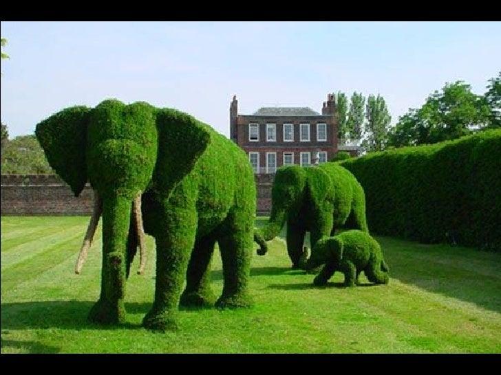 Jardineria fuera de serie for Fuera de serie historia