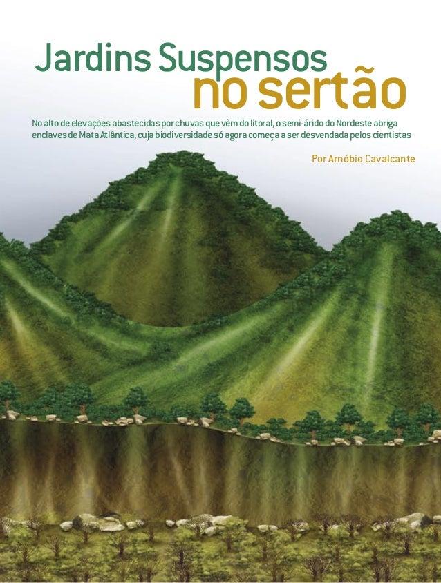 60 SCIENTIFICAMERICANBRASIL JANEIRO2005 Noaltodeelevaçõesabastecidasporchuvasquevêmdolitoral,osemi-áridodoNordesteabriga e...