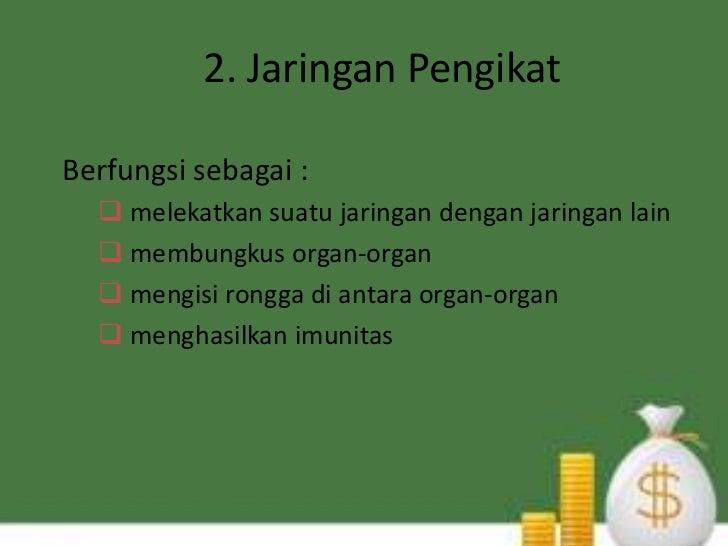 2. Jaringan PengikatBerfungsi sebagai :   melekatkan suatu jaringan dengan jaringan lain   membungkus organ-organ   men...