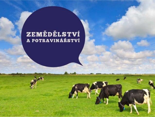 Jaroslav Faltýnek: Zemědělství a potravinářství