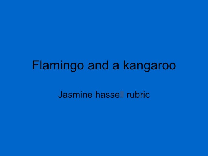 Flamingo and a kangaroo Jasmine hassell rubric