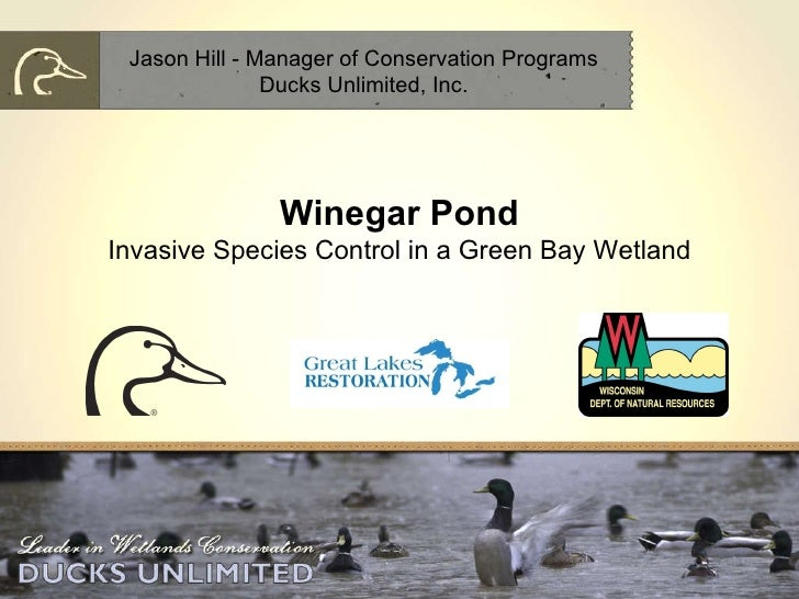 Winegar Pond Invasive Species Control in a Green Bay Wetland Jason Hill - Manager of Conservation Programs Ducks Unlimited...