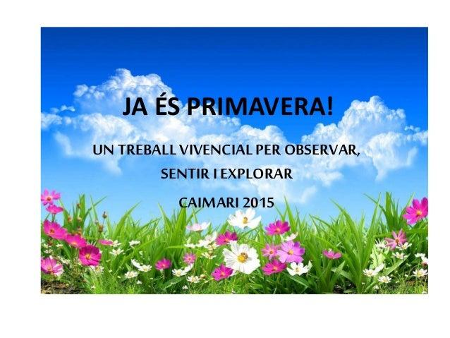 JA ÉS PRIMAVERA! UN TREBALLVIVENCIAL PER OBSERVAR, SENTIR I EXPLORAR CAIMARI2015