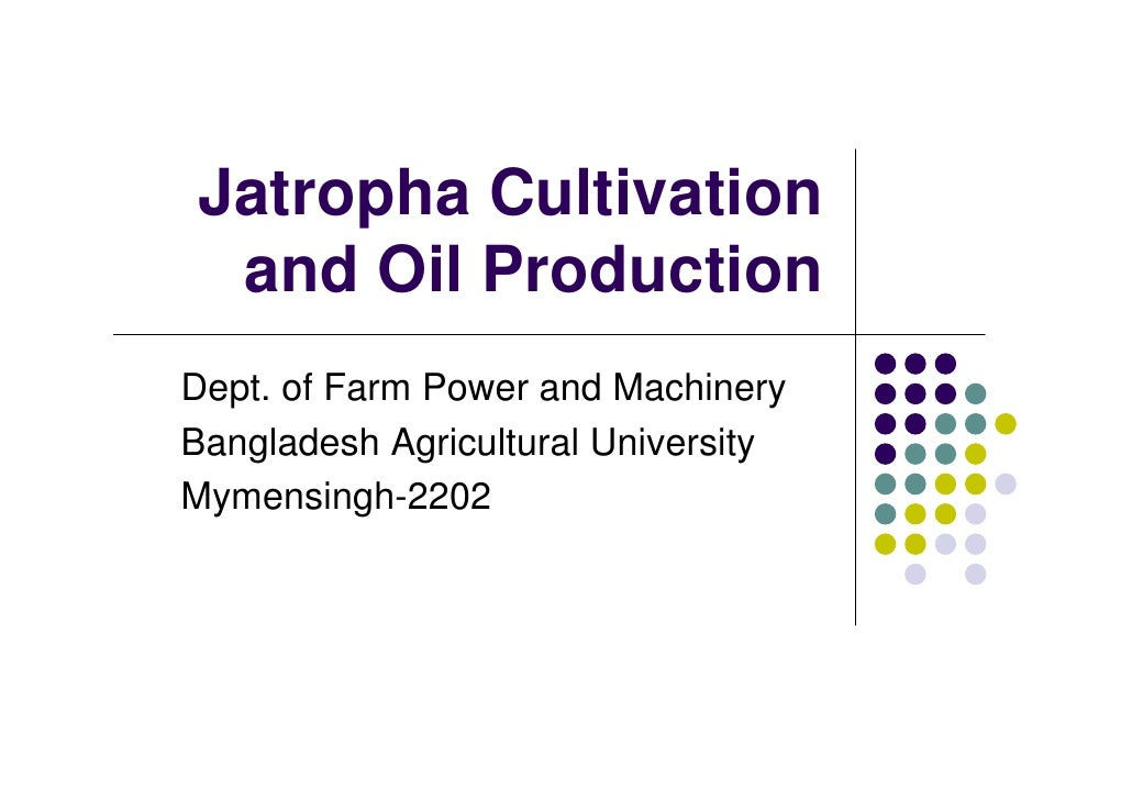 Jatropha Cultivation and Oil ProductionDept. of Farm Power and MachineryBangladesh Agricultural UniversityMymensingh-2202
