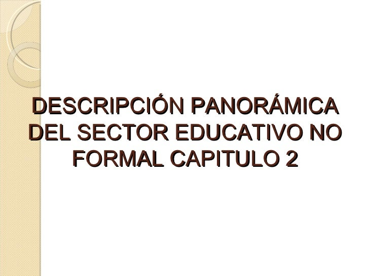 DESCRIPCIÓN PANORÁMICA DEL SECTOR EDUCATIVO NO FORMAL CAPITULO 2