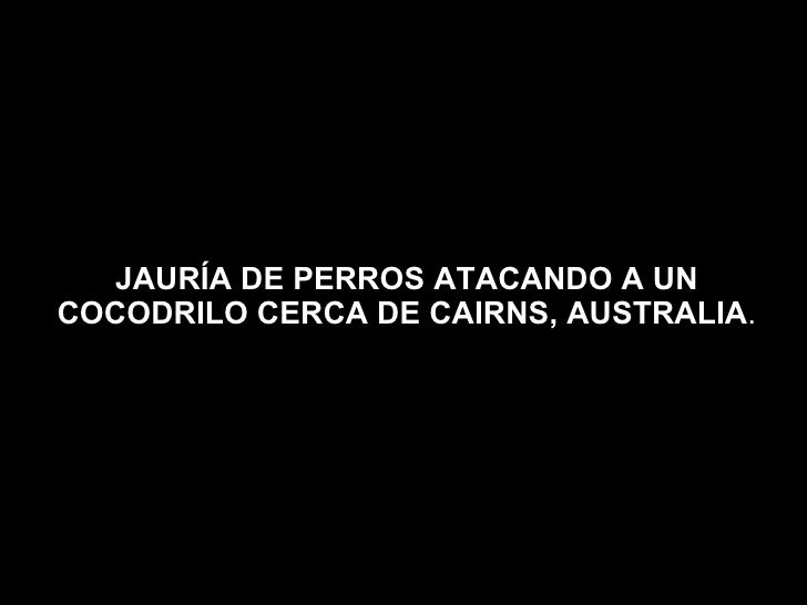JauríAdep..