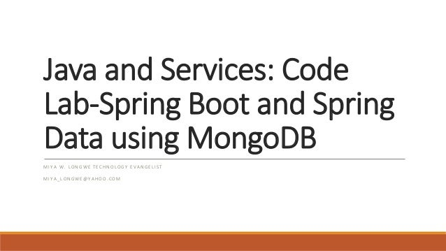 java and services code lab boot and data