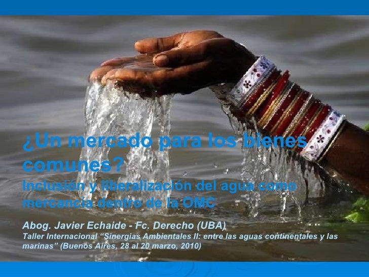 Mercantilización del agua potable en la OMC