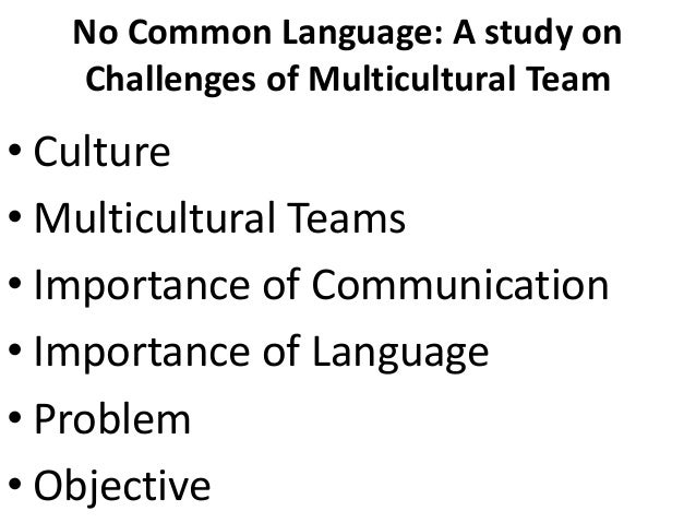No Common Language: A study on Challenges of Multicultural