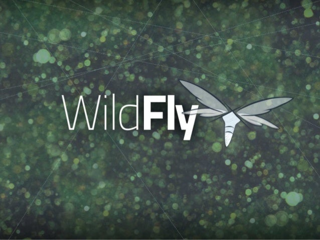 Extending WildFly