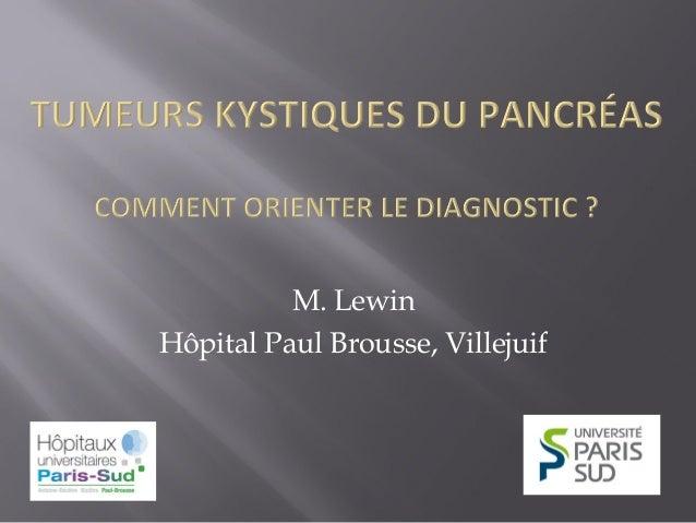 M. Lewin Hôpital Paul Brousse, Villejuif