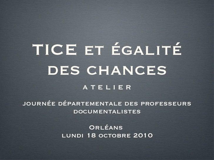 TICE et égalité des chances <ul><li>A T E L I E R </li></ul><ul><li>journée départementale des professeurs documentalistes...