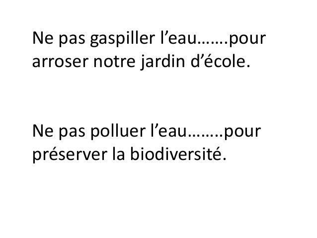 Ne pas gaspiller l'eau…….pour arroser notre jardin d'école. Ne pas polluer l'eau……..pour préserver la biodiversité.
