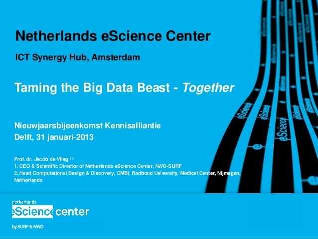 Netherlands eScience CenterICT Synergy Hub, AmsterdamTaming the Big Data Beast - TogetherNieuwjaarsbijeenkomst Kennisallia...