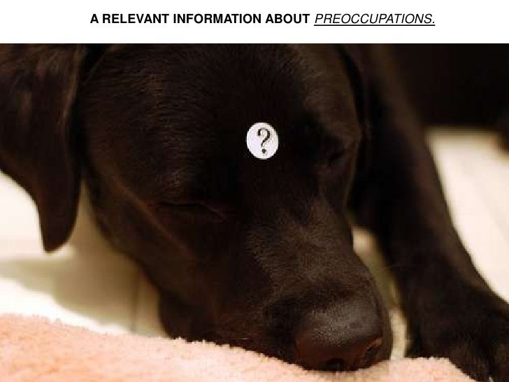 A RELEVANT INFORMATION ABOUT PREOCCUPATIONS.<br />