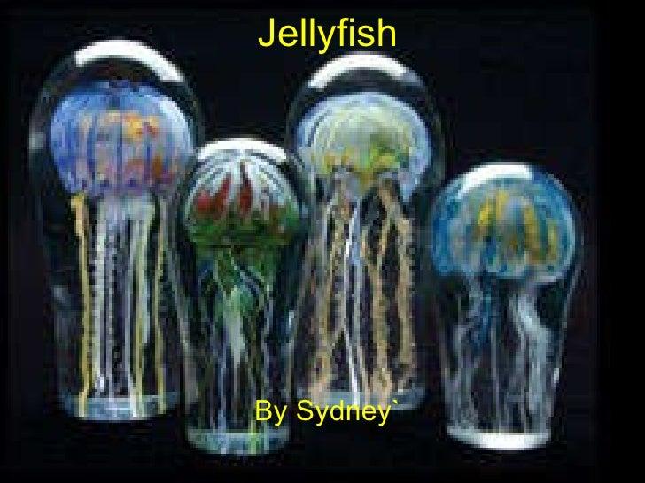 Jellyfish By Sydney`