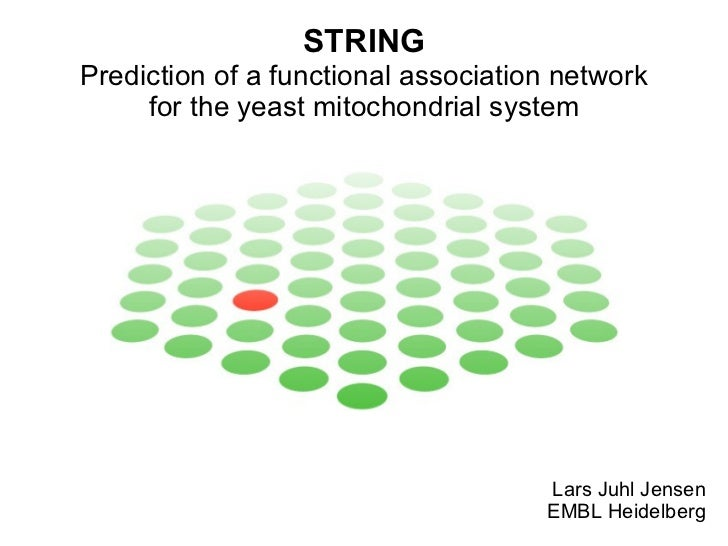 STRING Prediction of a functional association network for the yeast mitochondrial system Lars Juhl Jensen EMBL Heidelberg